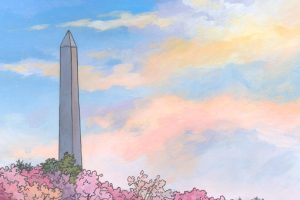 No.18 – The Washington Monument